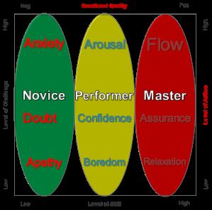 7-Flow Maturity